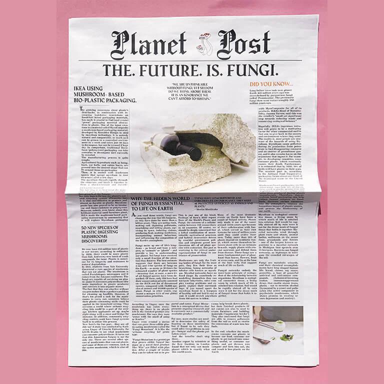 The Future Is Fungi